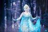 Elsa2sm