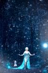 Elsa4sm