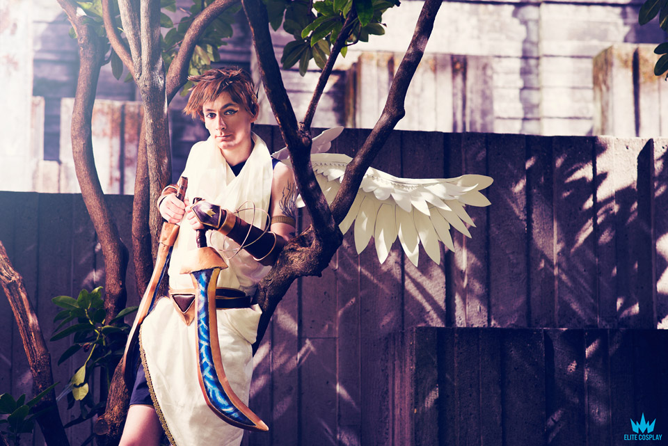 Icarus5sm